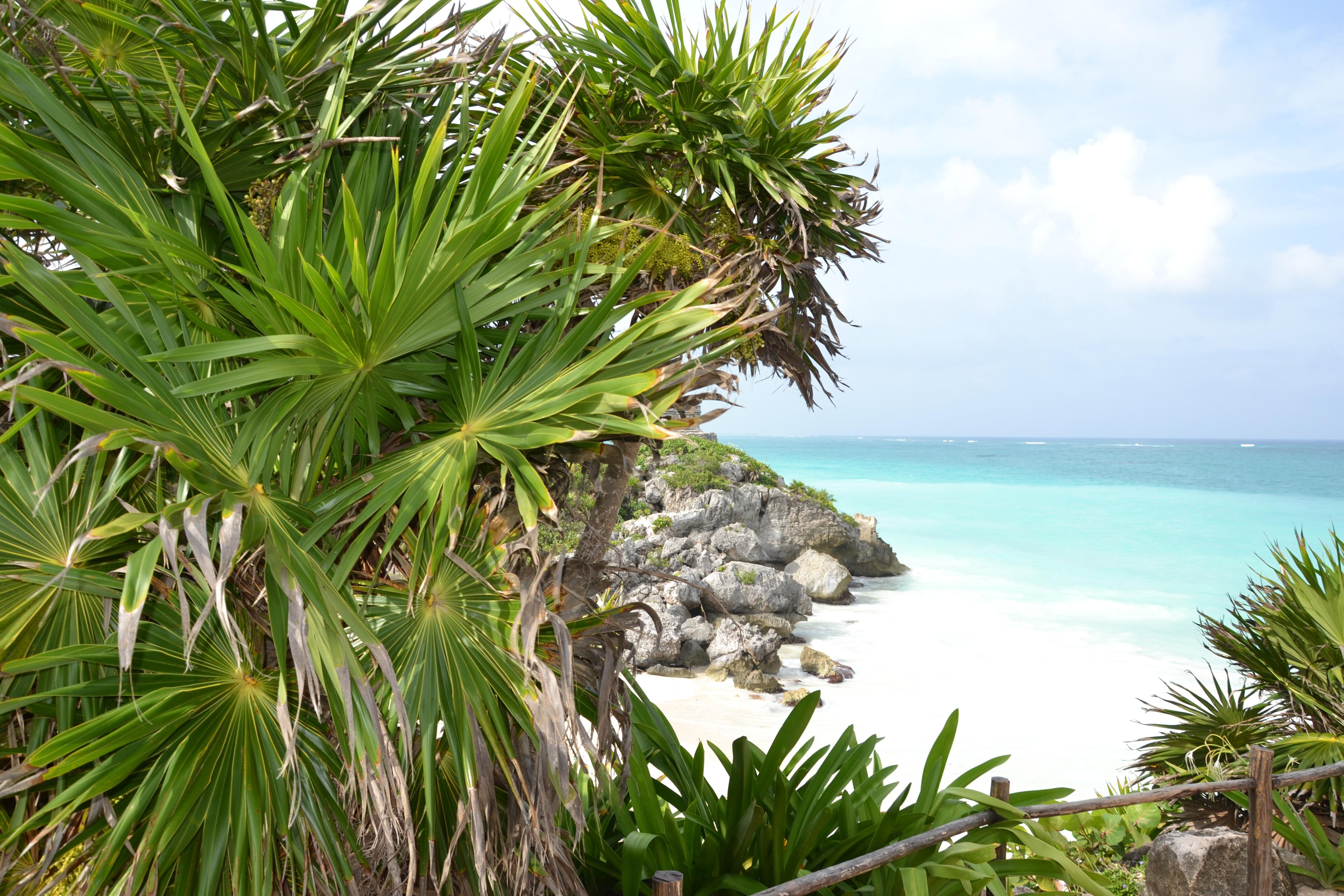 isla-contoy-viaggio-messico