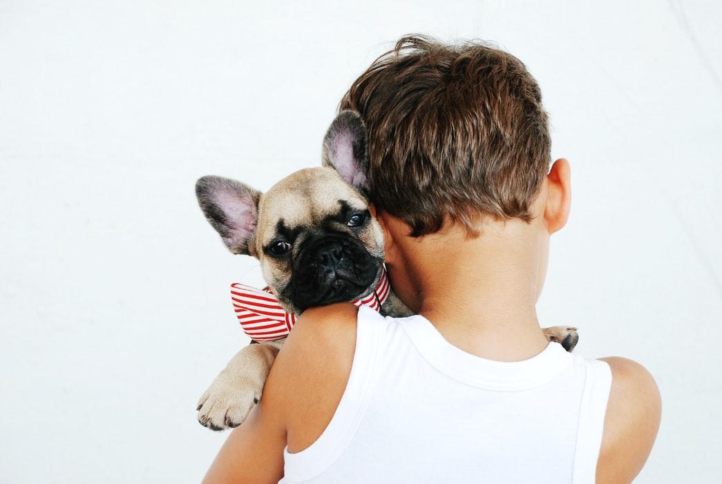 animali domestici in casa i benefici sui bambini