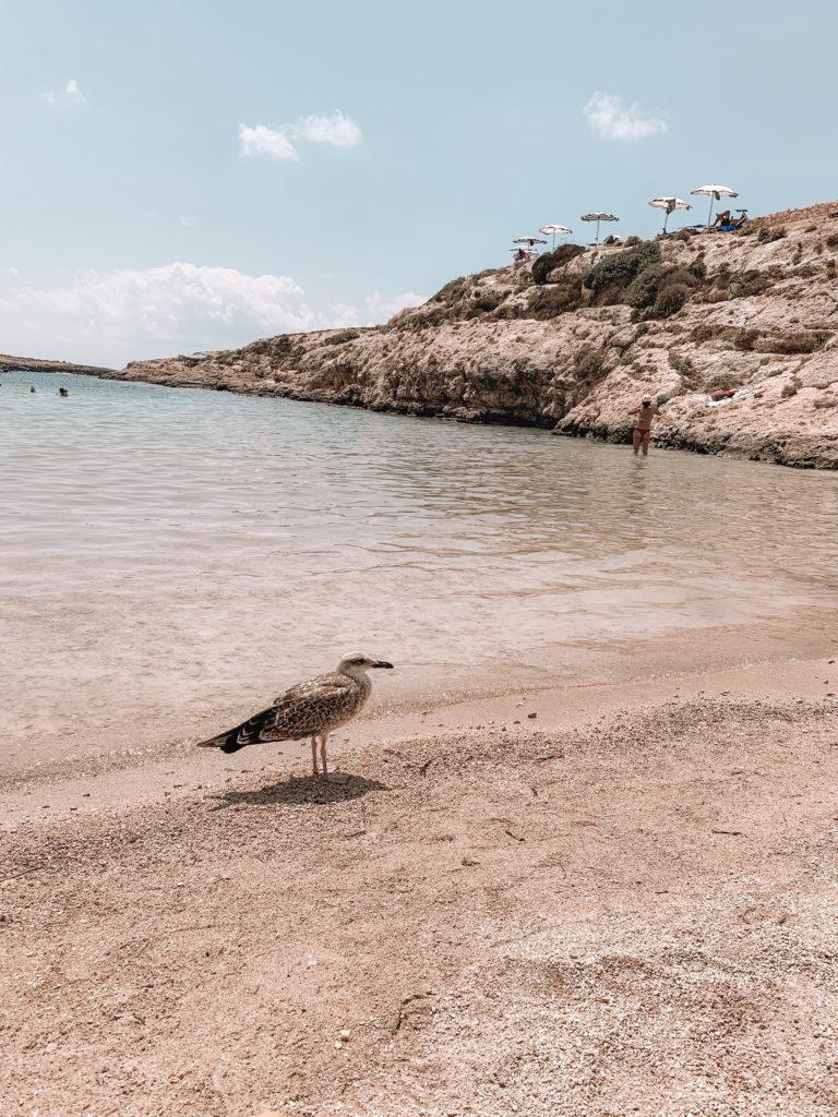 Cala Madonna Lampedusa