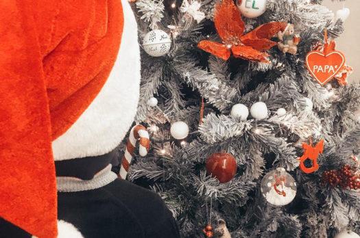Cosa trovare sotto l'albero: gioia, purezza e tempo: #pensapulito
