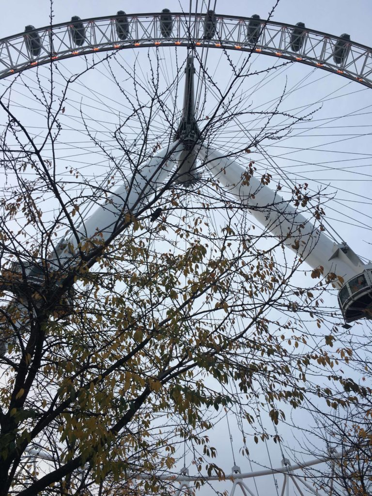 giro sulla London eye con musement