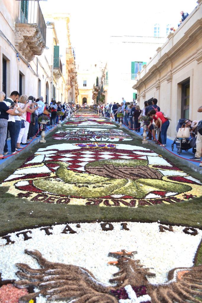 tappeti di fiori infiorata di noto