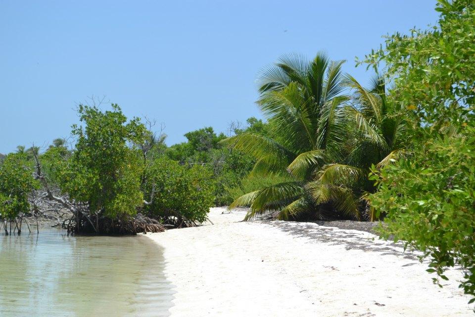 isla-contoy-messico