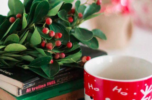 Libri da regalare a Natale 2019: dai grandi classici ai libri per bambini
